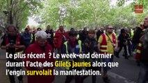 Paris : les goélands ont déclaré la guerre aux drones de la police