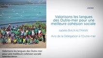 Valorisons les langues des Outre-mer pour une meilleure cohésion sociale - cese