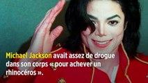"""Michael Jackson avait assez de drogue dans son corps """"pour achever un rhinocéros"""""""