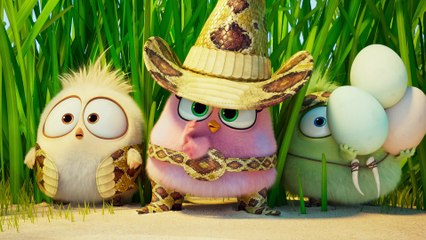 Angry Birds : Copains Comme Cochons - Bande annonce officielle
