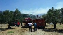 GÜNCELLEME - Ormanlık alanda çıkan yangın kontrol altına alındı  - BALIKESİR
