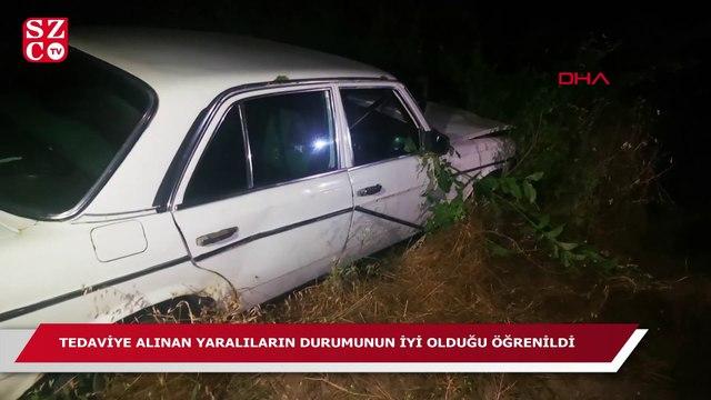 Kayısı bahçesine devrilen otomobildeki 2 kişi yaralandı