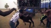 Au Nigeria, le marché de la viande rouge en plein boom