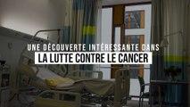 Une nouvelle découverte intéressante pour la lutte contre le cancer