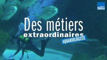 Ugo, aquariologiste à l'Aquarium de Paris au Trocadéro