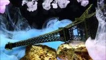 LE PRINTEMPS A PARIS Instrumental guitare