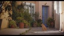 """Téaser tráiler """"Los días azules"""", documental sobre Antonio Machado dirigido por Laura Hojman"""