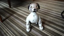 How robots like Aibo play to your emotions
