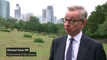 Gove refuses to pick between Hunt and Boris