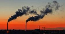 La justice juge l'État fautif pour son inaction contre la pollution de l'air en Île-de-France, une première