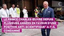 """Le prince Charles accusé de """"charlatanisme"""" : son nouvel engag..."""