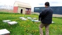L'apiculteur Ali Agougou de Miel Nature à Beauharnois ouvre une de ses ruches