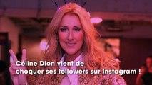 """""""Mangez un peu plus par pitié !"""" : les internautes choqués face à un cliché de Céline Dion"""