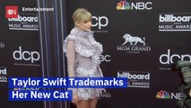 Taylor Swift Has A New Kitty