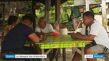 Guyane : le désespoir des Amérindiens les mène au suicide