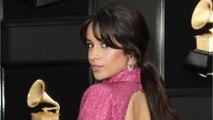 Camila Cabello & Matthew Hussey Split