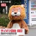 Quand le zoo Tobe à Aichi organise un exercice d'évasion de lion : un peu ridicule