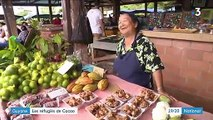 Guyane : les Hmong, réfugiés du Laos, devenus les premiers agriculteurs du territoire