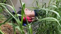 Two-year-old child and father drown at Mexico-US border river
