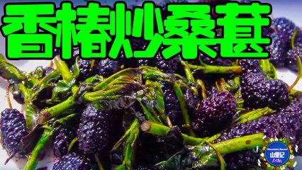 【MountainsRecord】师傅发现香椿树,徒弟一道香椿叶炒桑葚,两人吃得津津有味!
