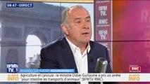 """Didier Guillaume annonce que la ratification du CETA sera possiblement """"à l'ordre du jour de l'Assemblée en juillet"""""""