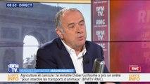 """Vaches à hublot: le ministre de l'Agriculture """"n'a pas été choqué"""" par les images"""
