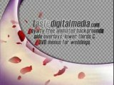 Wedding backgrounds, animated loops and special FX clips