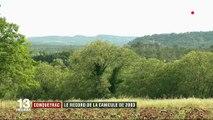 Gard : Retour dans le village le plus chaud de la canicule de 2003