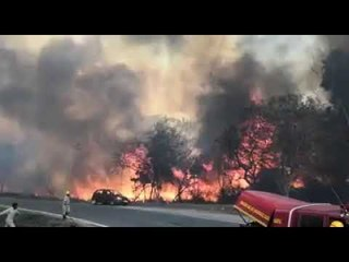 wildfire at Bandipur forest
