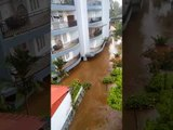 Kerala rains: Death toll rises to 22 as two killed in flash floods in Ernakulam