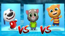 My Talking Hank vs My Talking Ginger vs My Talking Tom — Talking Tom Gold Run — Cute Puppy and Cats