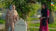 Anaa Episode 21 HUM TV Drama  #