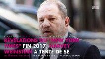 Harvey Weinstein : un enregistrement audio secret avec le New York Times dévoilé