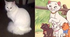 Ils appellent leur chat « Duchesse » qui donne naissance aux mêmes petits chatons Aristochats !