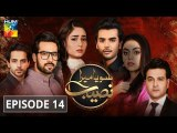 Soya Mera Naseeb Episode 14 HUM TV Drama 27 June 2019