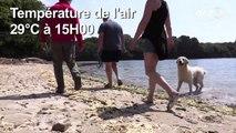 Dans le Finistère, les touristes profitent de la fraîcheur