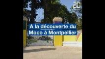 A la découverte du Moco, le nouveau centre d'art contemporain de Montpellier