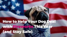 How to Help Your Dog Deal with Fireworks This Year (and Stay Safe)