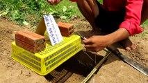 La Technologie Primitive: la Construction d'Oiseau Fantastique Piège de Faire de Panier en Plastique, Carton N