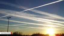 Climate Impact From Airplane Contrails Is Expected To Triple By 2050