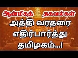 Athi varadar Festival Start |  அபூர்வ அத்தி வரதருக்கு இந்தாண்டு எப்போது உற்சவம்?