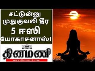 சட்டென்று முதுகுவலி தீர்க்கும் 5 யோகாசனப் பயிற்சிகள்!| 5 Easy Yogashanas to Reduce Back pain