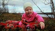 Viviendo entre los sami