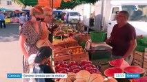 Gard : la journée d'un village écrasé par la chaleur
