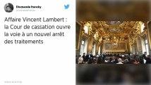Affaire Vincent Lambert. La Cour de cassation ouvre la voie à un nouvel arrêt des traitements