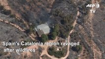 Wildfires ravage the Catalonia region of Spain