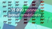 Du bœuf américain aux hormones dans les assiettes européennes ?