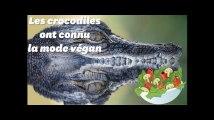 Les crocodiles ont aussi connu la mode vegan