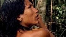 El canto de la selva - Tráiler español