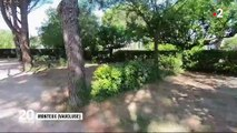 Canicule : un record de chaleur observé à Carpentras